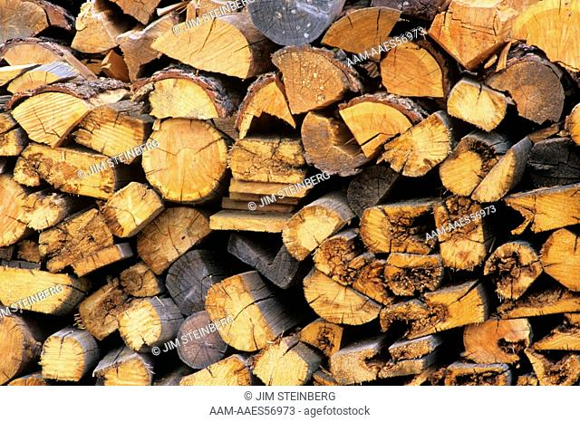Firewood for Potter Family uses every part of Tree, MT E Bar L Ranch