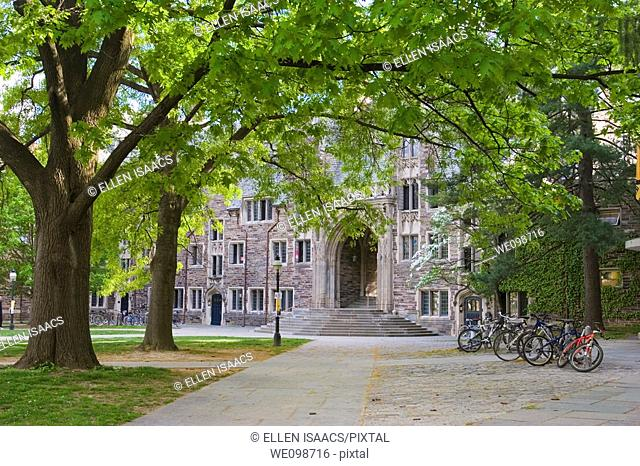 Tree lined path to Lockhart Hall, a dorm building on the Princeton University campus, typical of the school's Collegiate Gothic architectural style  Princeton