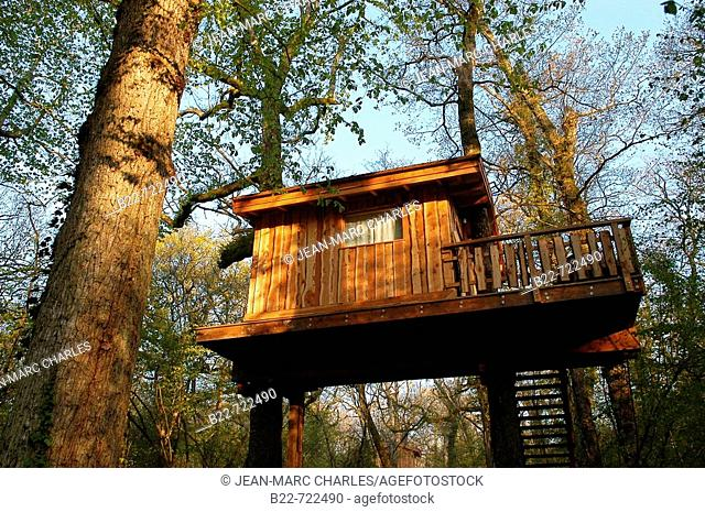 Tree house hotel hang on trees accessible only by ladders, Indian Forest Adventure Park, Le Bois Lambert. Le Bernard, Moutiers-les-Mauxfaits, Vendée, France