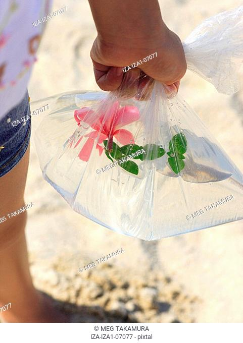 Mid section view of a girl holding Frangipani flower in a plastic bag