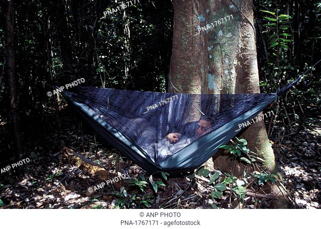 Modern expedition hammock in the Central Surinam Nature Reserve  Surinam  South America