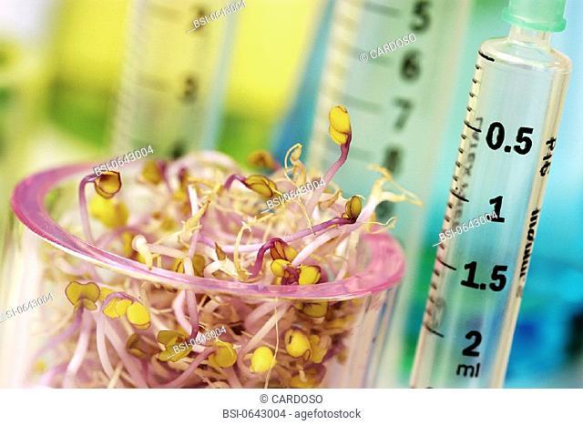 BIOTECHNOLOGY, GMO