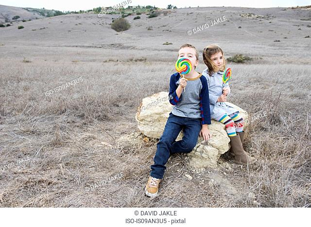 Portrait of brother and sister sitting on rock licking lollipops
