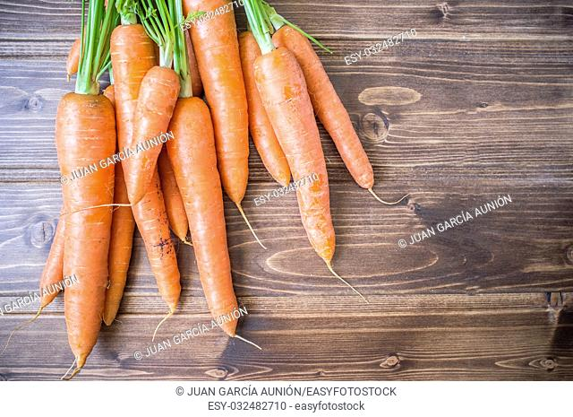 Some fresh carrots over wooden table from ecological farming. Closeup