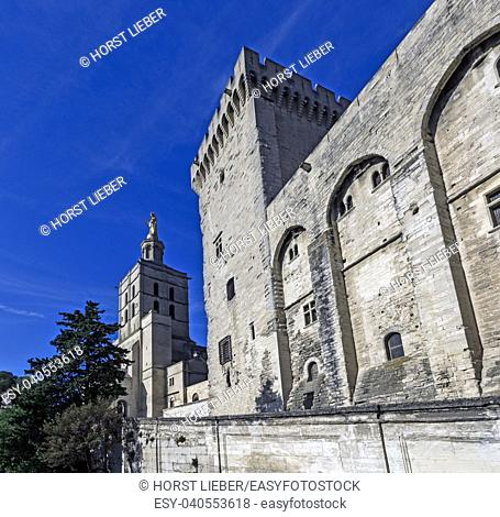 View of the Palace of the Popes and the Notra Dame Des Doms cathedral. Vaucluse, Provence, France, Europe