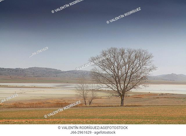 Landscape in the wildlife reserve Laguna de Gallocanta. Zaragoza. Aragon. Spain