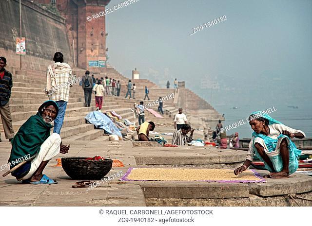 Elderly couple drying seeds in the sun on the ghats, Varanasi, Benares, Uttar Pradesh, India