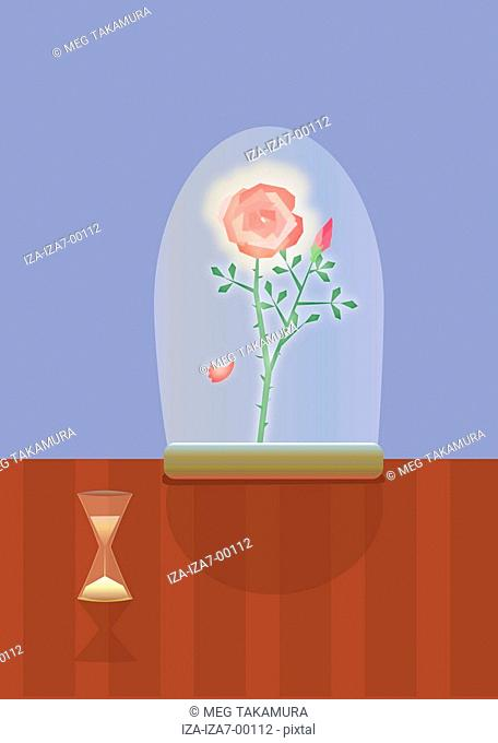Hourglass near a potted plant