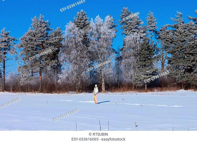 Scarecrow in winter snowy field