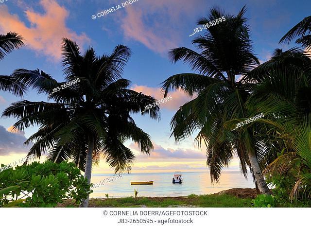 Tropical Palm Beach, Praslin Island, Seychelles, Indian Ocean, Africa