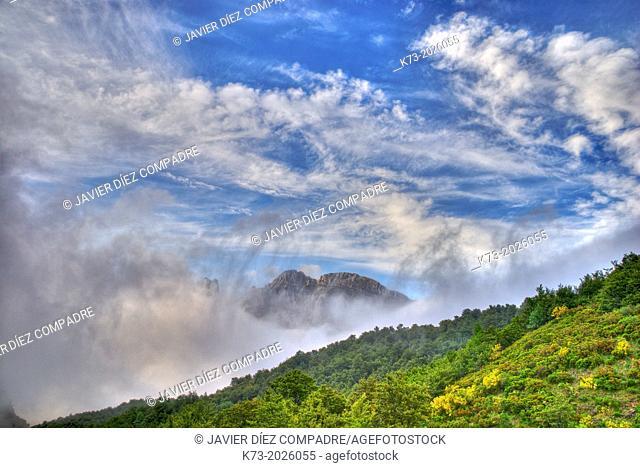 Valdeon Valley. Picos de Europa National Park. Leon Province. Castilla y Leon. Spain