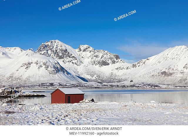 Cottage in snowy landscape - Lofoten - Norway