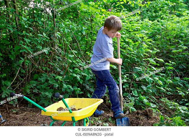 Boy digging in garden with toy spade and wheelbarrow