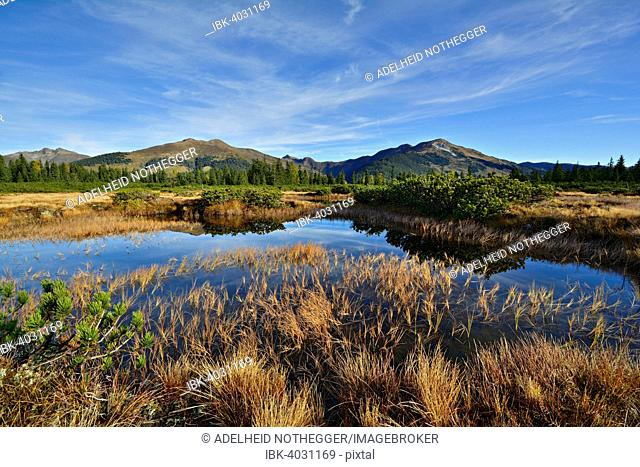 Sieben Möser, oligotrophic bog, bog pond, behind the Kitzbühel Alps, Gerlos Pass, Salzburg, Austria