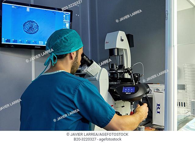 Embryology, ARU, Assisted Reproduction Unit, IVF, In Vitro Fertilization, Intra Cytoplasmic Sperm Injection, Hospital, Donostia, San Sebastian, Gipuzkoa