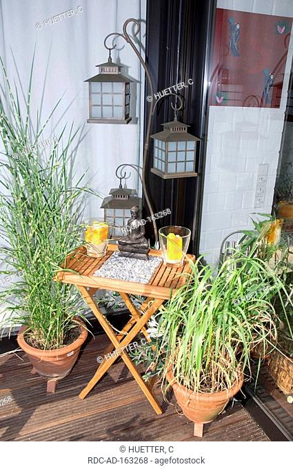 Table with candles and Buddha figure Japanese Silver Grass in flower pot and lanterns on terrace North Rhine-Westphalia Germany Miscanthus sinensis Maiden Grass
