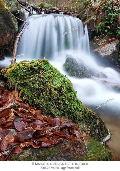Small waterfall at Riera de les Truites stream. Montseny Natural Park. Barcelona province, Catalonia, Spain