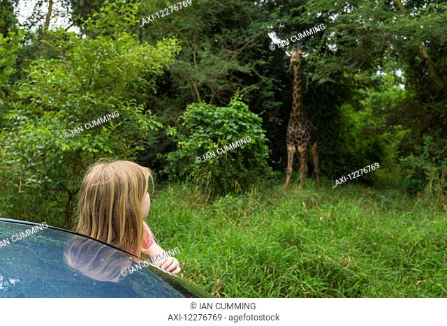 Young girl leaning out of car looking at old giraffe in Nyala Wildlife Park, near Chikwawa; Malawi