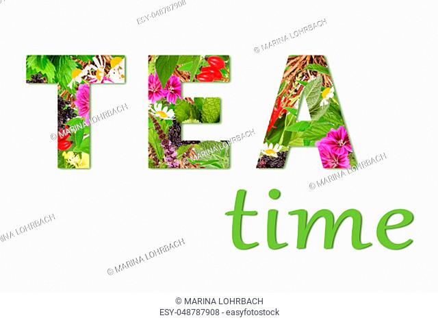 Lettering tea time. The word TEA has been created with different tea plants