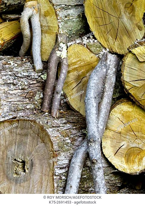 Wooden figures in wood pile