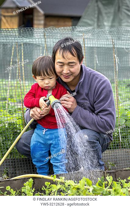 Image of TONY LIN and his son JIAND LIN, Plot 33, Eglinton Gardens, Kilwinning, Eglinton Growers Allotments, Kilwinning, Ayrshire, Scotland, UK