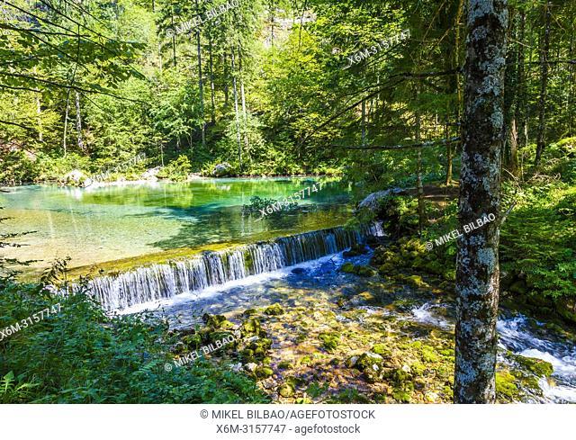 Kamnik Bistrica river in Kamniska Bistrica. Kamnik. Region de Alta Carniola. Eslovenia, Europa