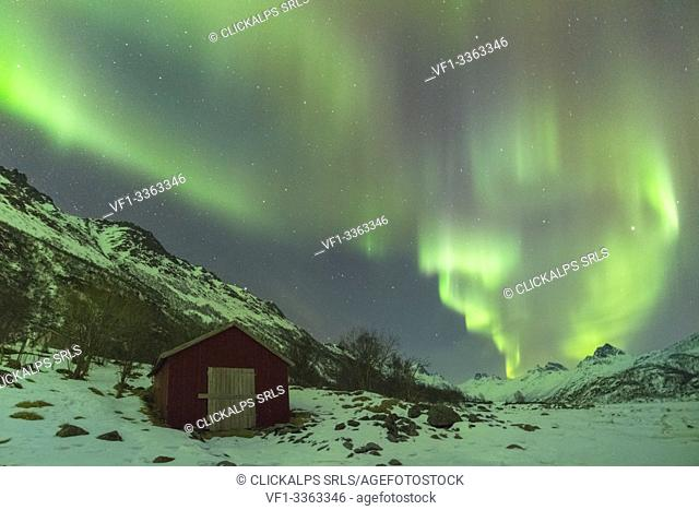 Northern lights over a red cabin in winter. Kleppstad, Nordland county, Northern Norway, Norway