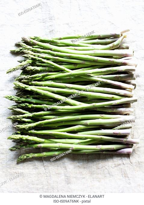 Still life of asparagus bunch in a row