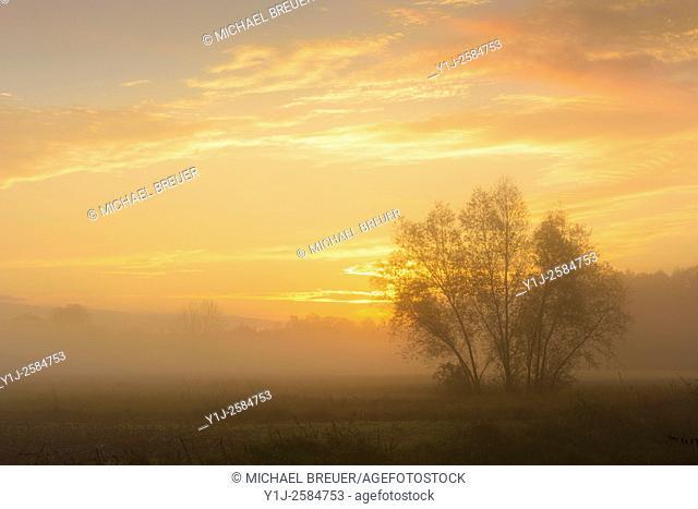 Misty landscape at sunrise, Hesse, Germany, Europe