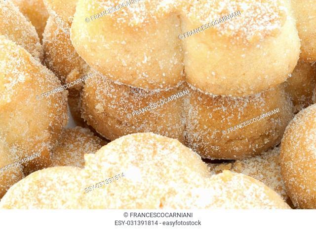 typical italian canestrelli cookies in studio