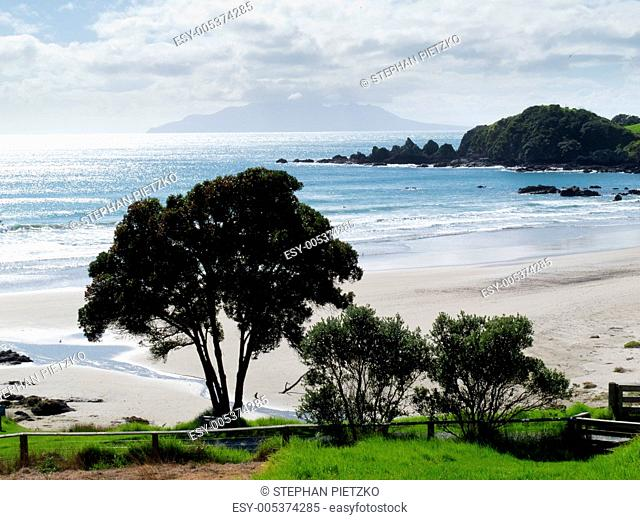 Beautiful coastal landscape, Tawharanui, NZ
