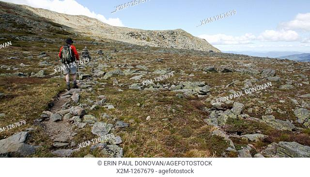 Mount Washington State Park - Hiker on the Alpine Garden Trail in the White Mountains, New Hampshire USA