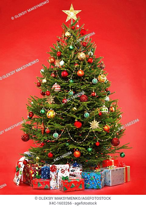 Beautiful decorated Christmas tree with colorful wrapped gifts under it  Isolated on bright red background