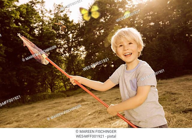 Little boy catching butterflies on a field