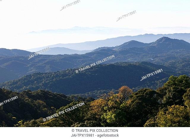 Thailand, Chiang Mai, Doi Inthanon National Park