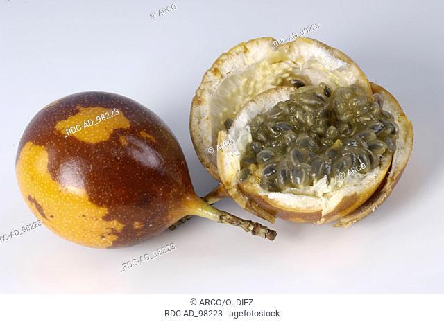 Sweet Granadilla fruit Passiflora ligularis Passifloraceae