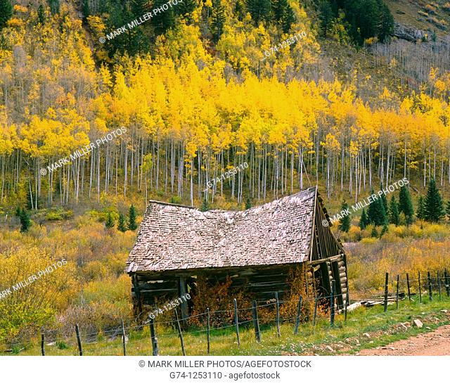 Ashcroft ghost town in Colorado Rockies, White River National Forest, Colorado, USA