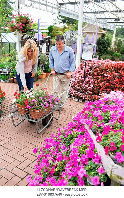 Couple putting flowers in trolley