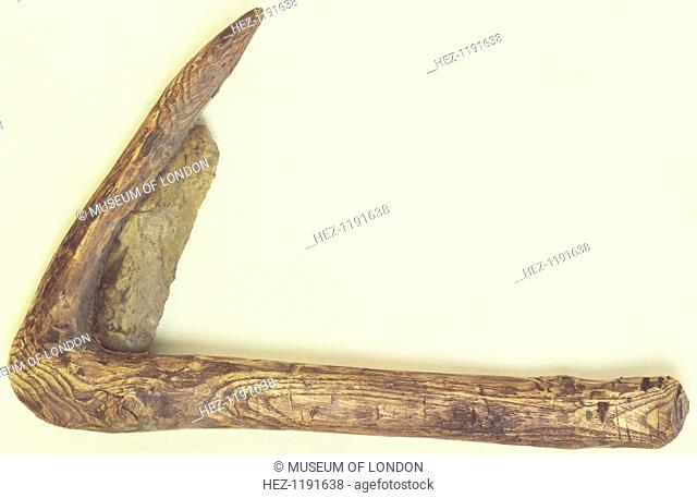Prehistoric sickle. Flint sickle, in a modern handle, used in harvesting grain. It was found in the River Thames
