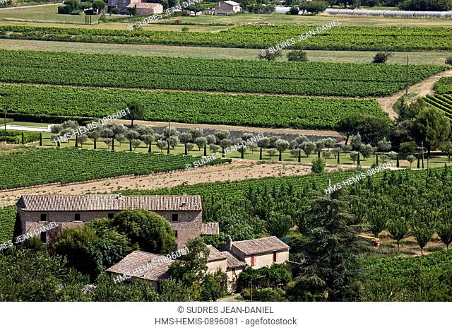 France, Vaucluse, Luberon, Menerbes, labelled Les Plus Beaux Villages de France (The Most Beautiful Villages of France), Cotes du Luberon AOC Vineyard