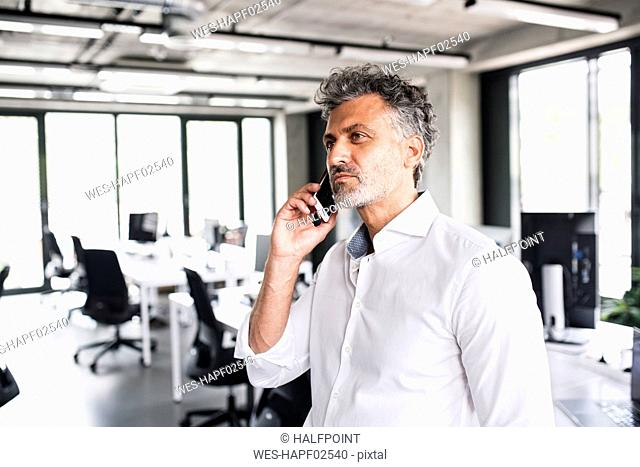 Mature businessman on cell phone in office