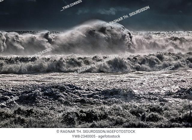 Large waves, South Coast, Iceland