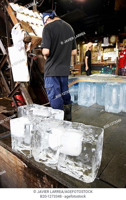 Ice, Tsukiji fish market, Tokyo, Japan