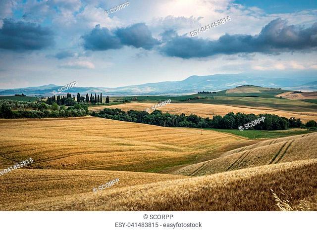 Beautiful summer landscape of Tuscany, Italy