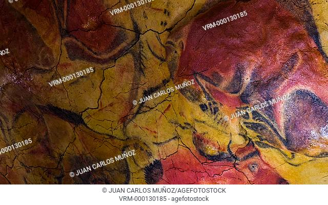 Paleolithic Cave Art of Northern Spain. Altamira Neo-cave