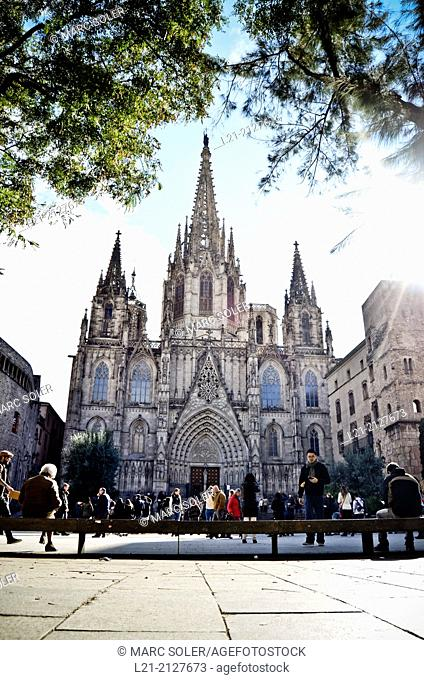 Cathedral of the Holy Cross and Saint Eulalia, also known Barcelona Cathedral. Barcelona, Catalonia, Spain