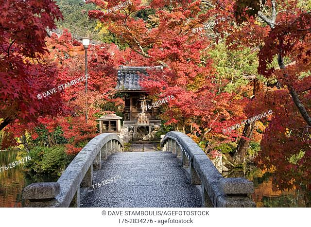 Autumn colors at Eikan-do Zen Temple, Kyoto, Japan