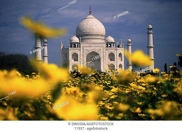 Taj Mahal. Agra. India