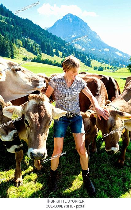 Woman bonding with herd of cows on field, Sonthofen, Bayern, Germany
