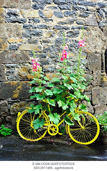 decorative bicycle, Salers, Cantal Department, Auvergne, France